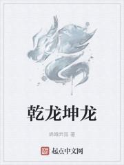 《乾龙坤龙》作者:磐龙五少.QD