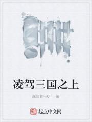 《凌驾三国之上》作者:屌丝青年01