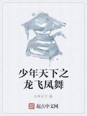 《少年天下之龙飞凤舞》作者:少年天下