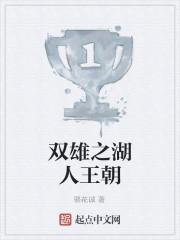 《双雄之湖人王朝》作者:骆花诚