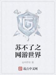 《苏不了之网游世界》作者:山中野农
