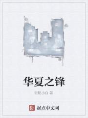 《华夏之锋》作者:张阳小白