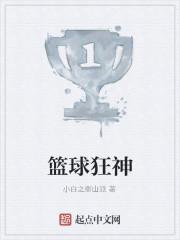 《篮球狂神》作者:小白之衡山派