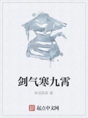 《剑气寒九霄》作者:侠武新星