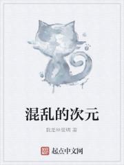 《混乱的次元》作者:我是林俊明