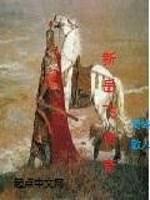 《新岳飞传奇》作者:椅岭散人