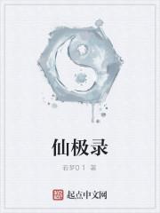 《仙极录》作者:若梦01