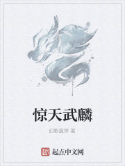 《惊天武麟》作者:幻影旋律