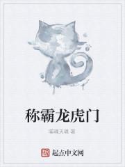 《称霸龙虎门》作者:噬魂灭魂