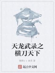 《天龙武录之刀横天下》作者:龙禅子