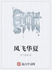 《风飞华夏》作者:纷飞华夏