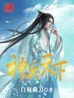 《神兵天下》作者:白袍藏刀