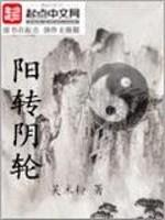 《阴阳轮转》作者:吴米粉