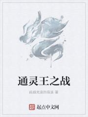 《通灵王之战》作者:超越光速的音速