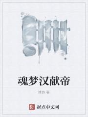 《魂梦汉献帝》作者:刘协