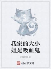 《我家的大小姐是吸血鬼》作者:赤雪铭峰
