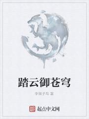 《踏云御苍穹》作者:李辣子鸟