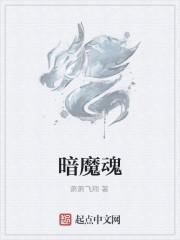 《暗魔魂》作者:萧萧飞翔
