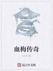 《血梅传奇》作者:方小乐