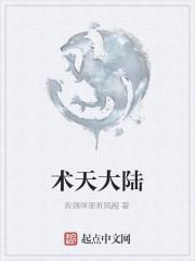 《术天大陆》作者:弈剑弹潮听风阁