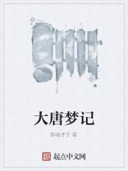 《大唐梦记》作者:寒城才子