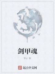 《剑甲魂》作者:梦d