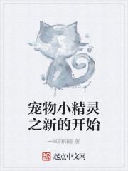 《宠物小精灵之新的开始》作者:一双阴阳瞳