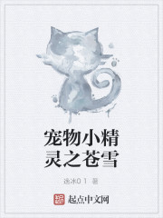 《宠物小精灵之苍雪》作者:逸冰01