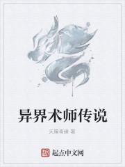 《异界术师传说》作者:天赐奇缘