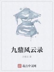 《九鼎风云录》作者:方健武