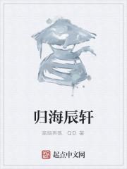 《归海辰轩》作者:黑暗男孩.QD