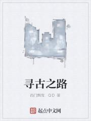 《寻古之路》作者:西门飘雪.QD