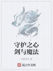 《守护之心剑与魔法》作者:幻雨灵冥