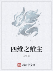 《四维之维主》作者:瑾惠