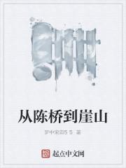 《从陈桥到崖山》作者:梦中宋韵55