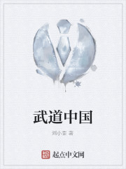 《武道中国》作者:刘小歪