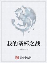 《我的圣杯之战》作者:心叶新叶