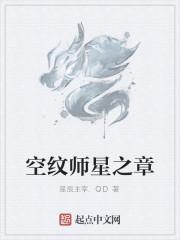 《空纹师星之章》作者:星辰主宰.QD