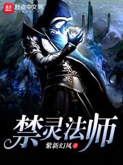 《禁灵法师》作者:紫新幻风
