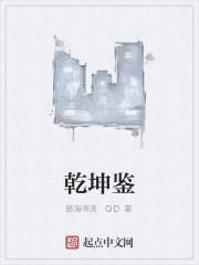 《乾坤鉴》作者:怒海听涛.QD