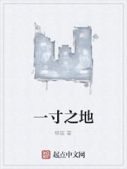 《一寸之地》作者:柳宸