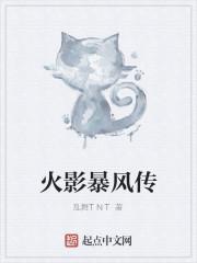 《火影暴风传》作者:乱舞TNT