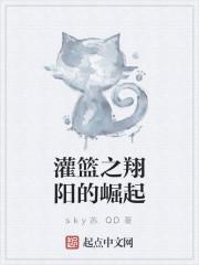 《灌篮之翔阳的崛起》作者:sky苏.QD