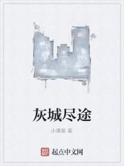 《灰城尽途》作者:小潘猪