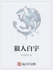 《狼人白宇》作者:秋风断剑