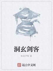 《洞玄剑客》作者:张孟卢陈