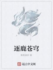 《逐鹿苍穹》作者:纳兰飞尘