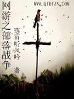 《网游之部落战争》作者:落雨听风吟