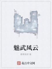 《魅武风云》作者:慕青晓灵