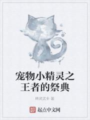 《宠物小精灵之王者的祭典》作者:精灵武士